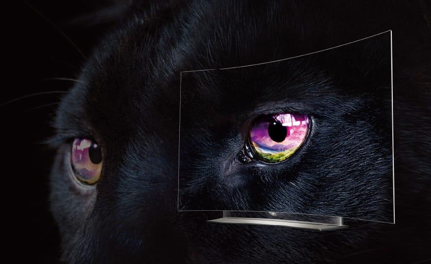 01_PERFECT-black