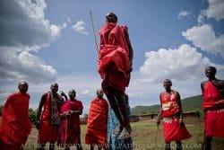 Masajowie: tradycyjny taniec. Masai Mara, Kenia, luty 2015.