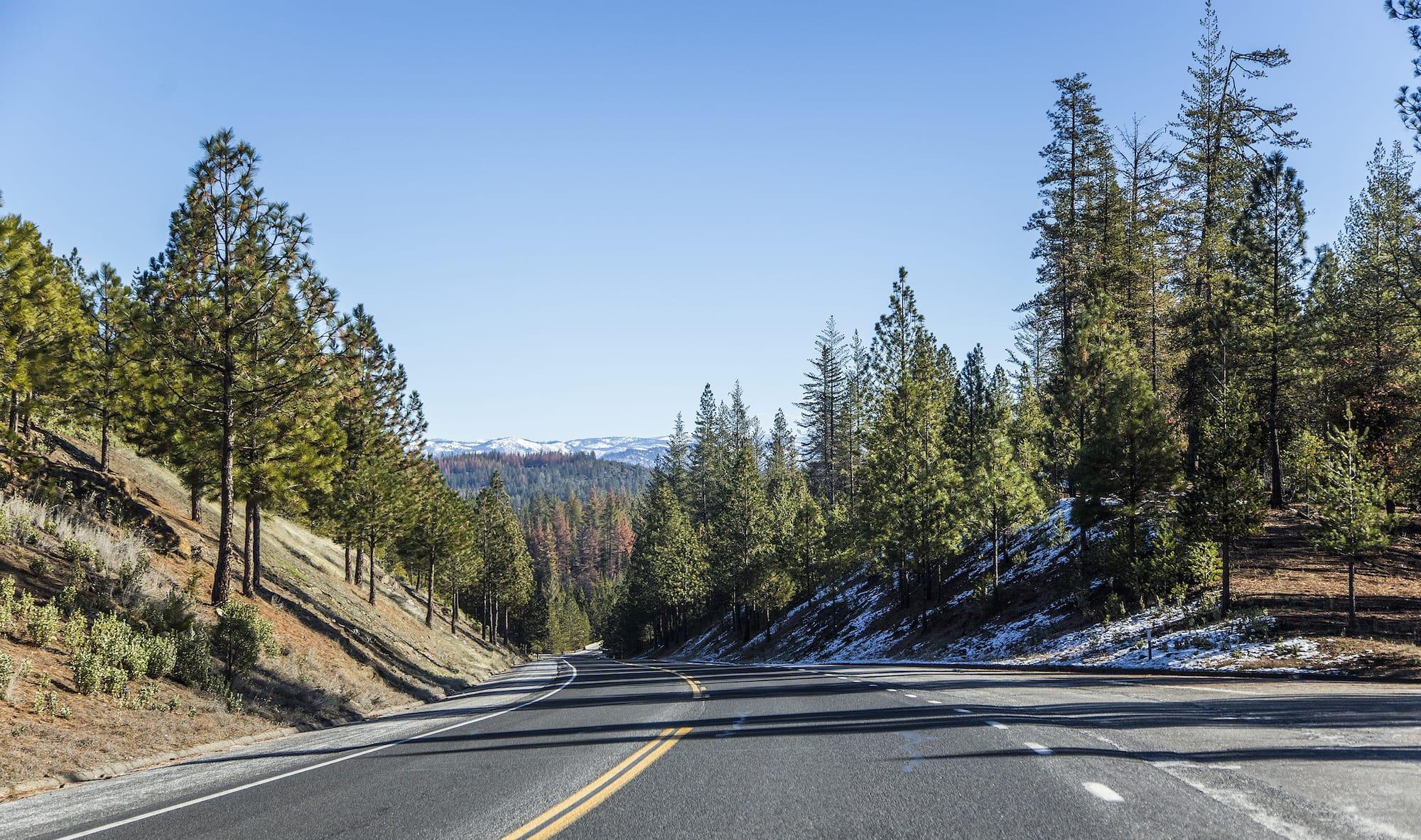 Yosemite Szykulski 1